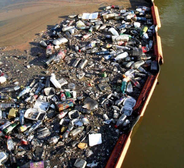 Top 8 everyday items that are damaging the environment…