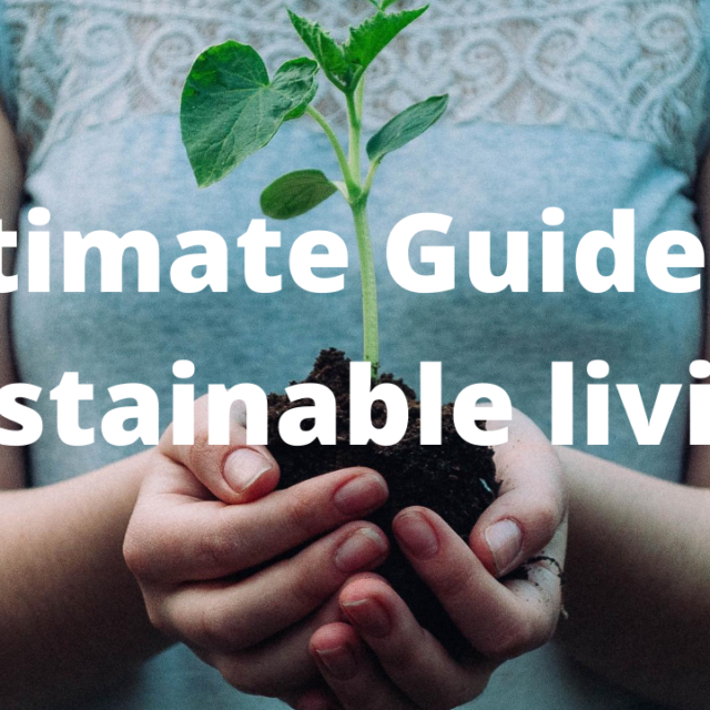 featued image of girl holding a sapling - sustainable living